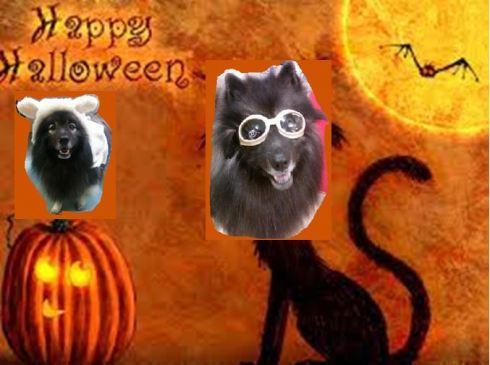 Happy Howl-oween!!!