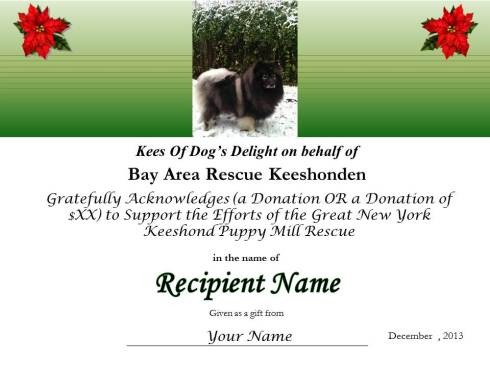 Give a Kees lover a heartwarming gift of helping to give the NY puppy mill Keeshonden a new life!
