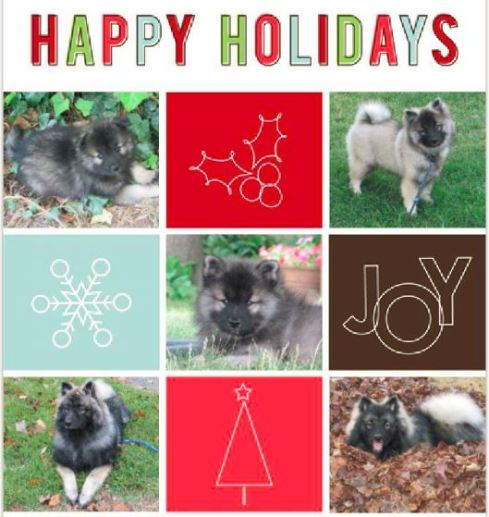 Clancy holiday card