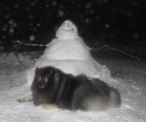 Clancy enjoys the companionship of the snow  when he can.