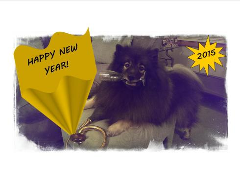 Here's a toast to all that love their dog!  Happy New Year!