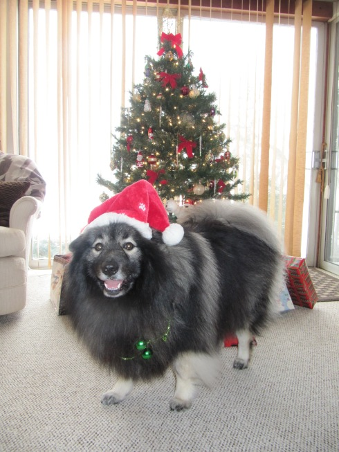 Merry KeesMas!
