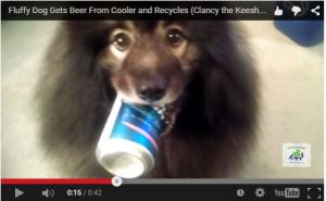 Clancy beer cooler video