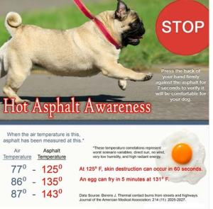 dogs-hot-asphalt-chart