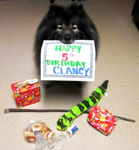 Clancy 5th Birthday 2