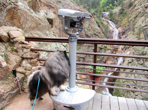 Clancy sightsee 7 falls