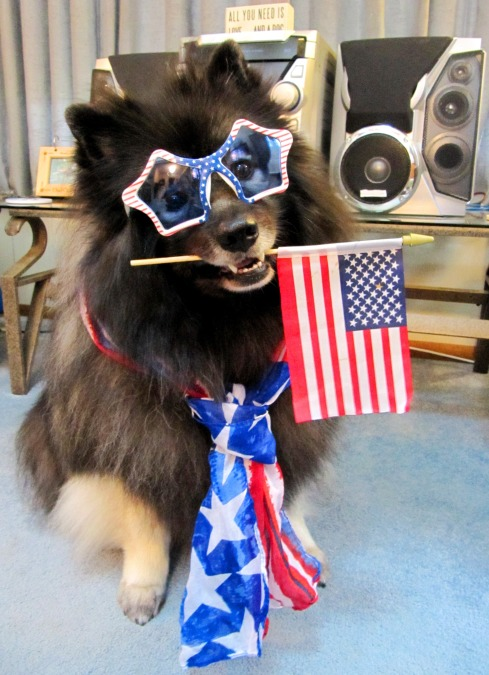 Clancy 4th of July 1.jpg
