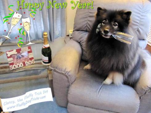 clancy-happy-new-year-for-fb