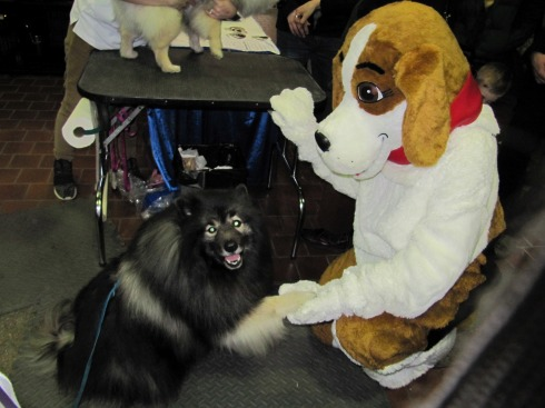 clancy-shaking-paws-with-mascot